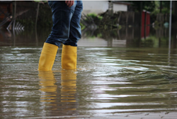 Flood Recovery Business Resource Guide